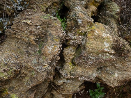 close up of andesite2 good.jpg